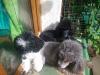 c360_2012-10-03-12-07-12_org