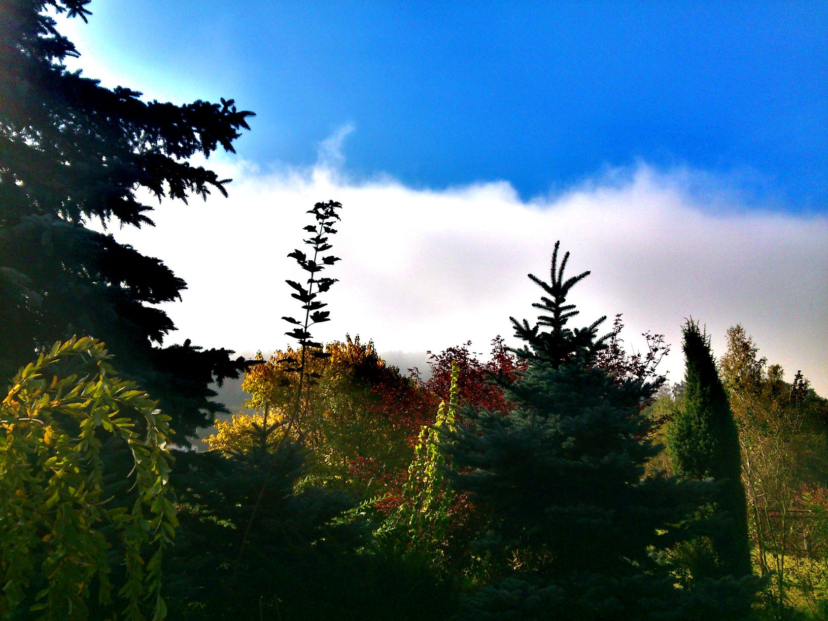 c360_2012-10-03-11-37-52
